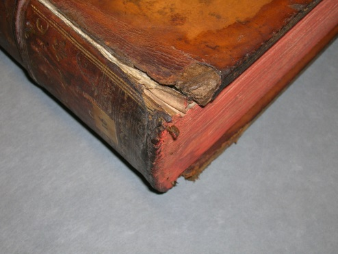 Typical wear and water-damage to the tail edges of the boards