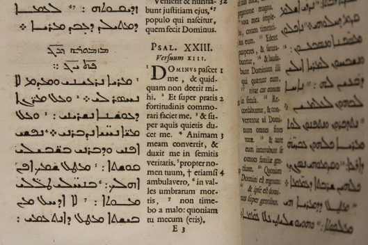 The Psalms in Syriac.